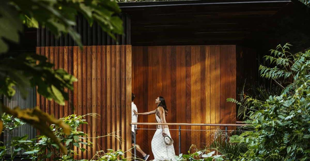 couple-in-rainforest-hotel